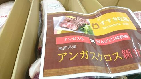 【肉専用種】